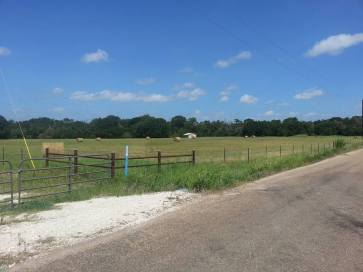 whirldworksfarm