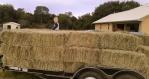WhirldWorks Hay Nest
