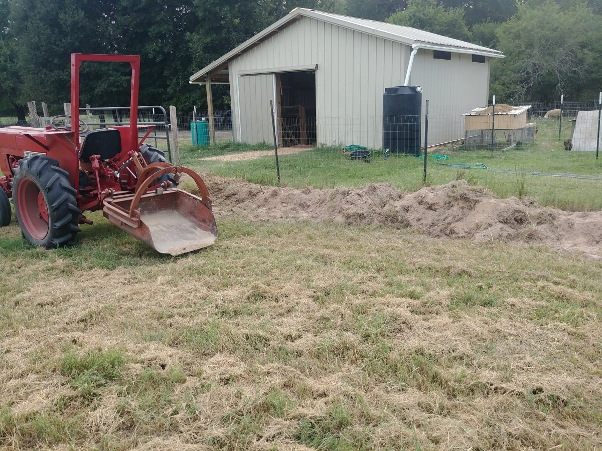 homesteading u2013 whirl u0027d works farm