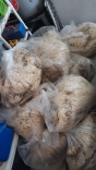 Fresh bags of raw wool
