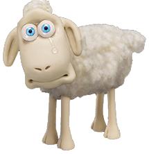 Sad Sheep