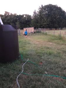 Evening Chores